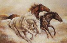 sag wild horse